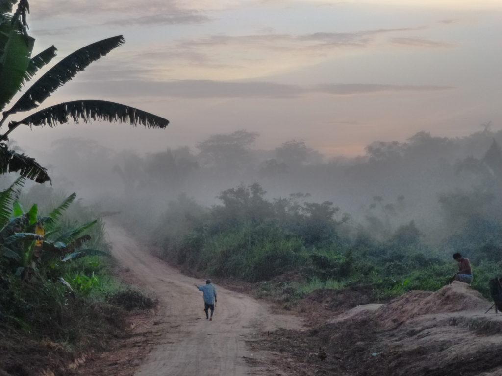Coeur de forêt - Pérou
